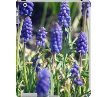 Spring Flower Series 15 iPad Case/Skin