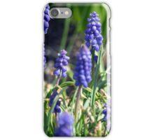 Spring Flower Series 14 iPhone Case/Skin