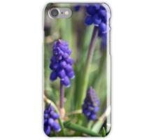 Spring Flower Series 12 iPhone Case/Skin