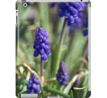 Spring Flower Series 12 iPad Case/Skin