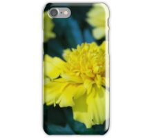 Spring Flower Series 6 iPhone Case/Skin