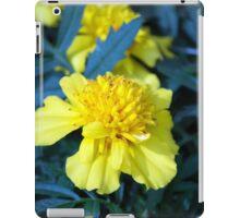 Spring Flower Series 5 iPad Case/Skin