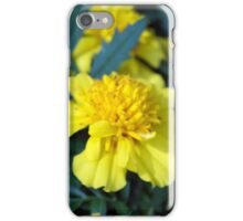 Spring Flower Series 4 iPhone Case/Skin