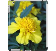 Spring Flower Series 4 iPad Case/Skin