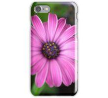 Spring Flower Series 2 iPhone Case/Skin