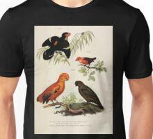 Bilder atlas zur Wissenschaftlich populären Naturgeschichte der Vögel in ihren sämmtlichen Hauptformen Leopold Joseph Fitzinger 1864 037 Unisex T-Shirt