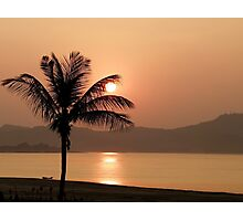 Sunset and palm tree Photographic Print