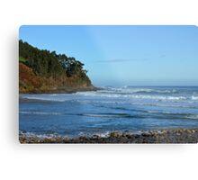 Seashore Metal Print