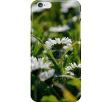 Daisy Flowers iPhone Case/Skin
