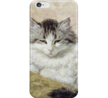 Vintage famous art - Henriette Ronner - A Cat iPhone Case/Skin