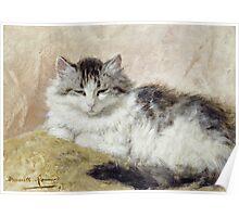 Vintage famous art - Henriette Ronner - A Cat Poster