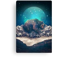 Under the Stars (Ursa Major) Canvas Print