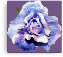 Cosmic rose Canvas Print