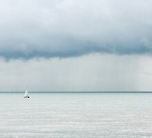 Sailing into the storm by Andrew O'Hara