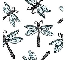 Insect dragon-fly on the gray background Photographic Print