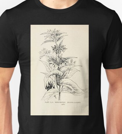Southern wild flowers and trees together with shrubs vines Alice Lounsberry 1901 158 Honeysuckle Unisex T-Shirt