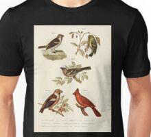 Bilder atlas zur Wissenschaftlich populären Naturgeschichte der Vögel in ihren sämmtlichen Hauptformen Leopold Joseph Fitzinger 1864 042 Unisex T-Shirt