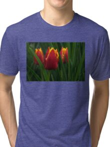 Cheerfully Wet Red and Yellow Tulips Tri-blend T-Shirt