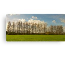 All in a Row. Canvas Print