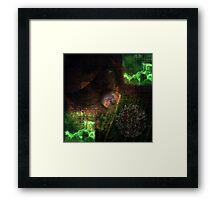Sasu #3 - The Third Quarter Framed Print