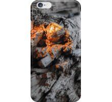 Fire Light on Drift Wood iPhone Case/Skin