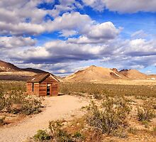 Old Cabin At Rhyolite by James Eddy