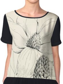 Southern wild flowers and trees together with shrubs vines Alice Lounsberry 1901 053 Great Flowered Magnolia Chiffon Top