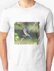 04 Eastern Bluebird  Unisex T-Shirt