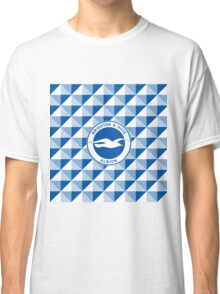 Brighton & Hove Albion football club Classic T-Shirt