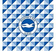 Brighton & Hove Albion football club Photographic Print