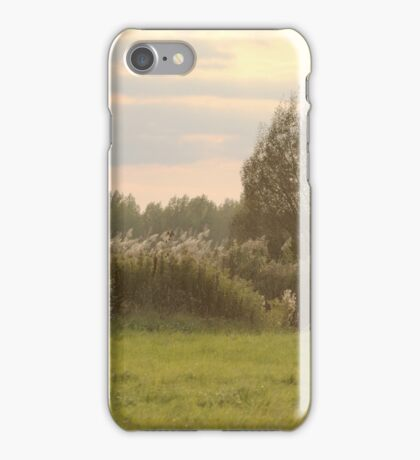 Landscape with Reeds iPhone Case/Skin