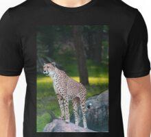 cheetah standing on rock Unisex T-Shirt