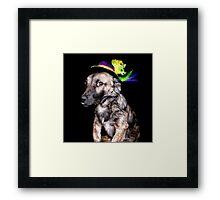 Mardi Grad Pup 2 Framed Print