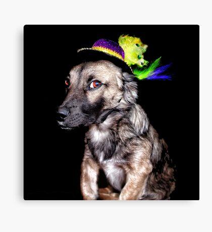 Mardi Grad Pup 2 Canvas Print