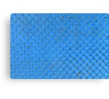 blue fence net Canvas Print