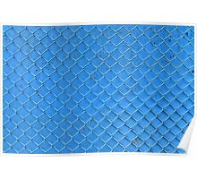 blue fence net Poster