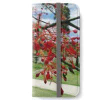 Flame Tree Flowers iPhone Wallet/Case/Skin