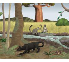 Pleistocene Madagascar Sticker