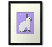 Blue Sable Point Rabbit Framed Print