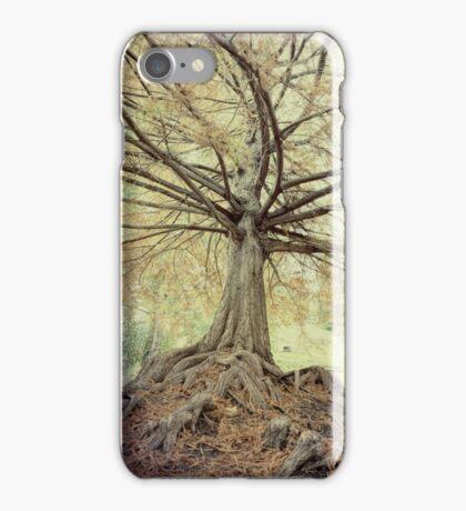 Autumn Beckons iPhone Case/Skin