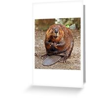"""Beaver"" Greeting Card"