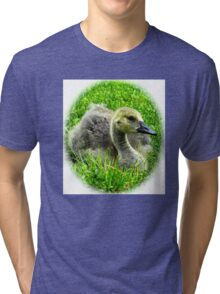 Fuzzy little goose baby Tri-blend T-Shirt