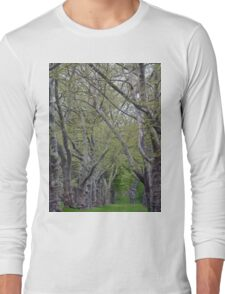 Tree Lined Continental Path  Long Sleeve T-Shirt