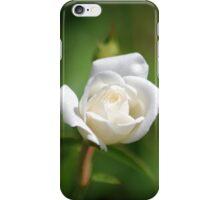 White rosebud iPhone Case/Skin