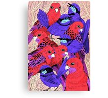 Wrens and Rosellas Delight! Canvas Print