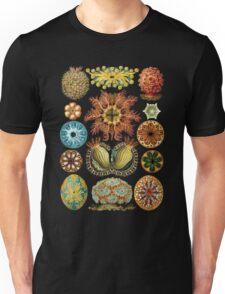 Haeckel illustration Unisex T-Shirt