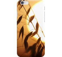 oat on a sundown iPhone Case/Skin