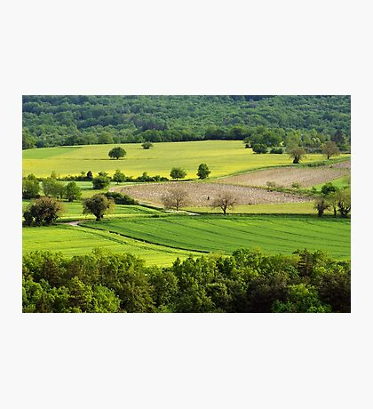 Springtime in the countryside Photographic Print