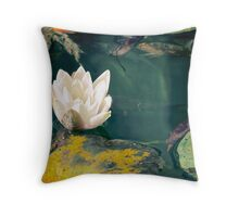 Waterlily in garden pond Throw Pillow