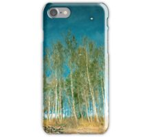 Beautiful summer in the forest. Reflection of birch in a lake iPhone Case/Skin